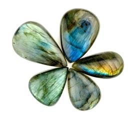 Gorgeous blue labradorite gemstones in flower star shape isolate