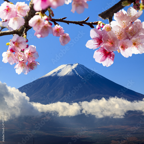 Foto op Aluminium Tokyo the sacred mountain of Fuji in the background of blue sky at Jap