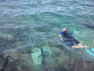 Snorkeling at Georgetown