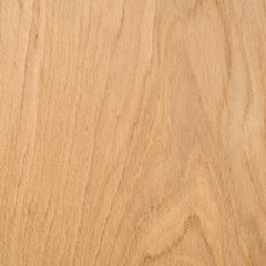 Extract oak boards after pretreatment