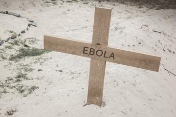 Ebola cross II