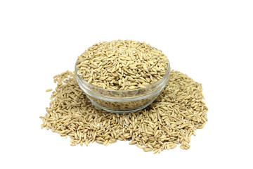grain oats in a glass on a white background