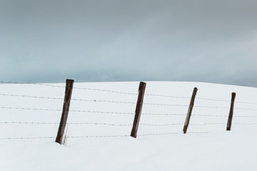 Stakes and barbed wire in the snowy meadows. Grey cloudy sky
