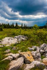 Storm clouds over Bear Rocks Preserve, Monongahela National Fore