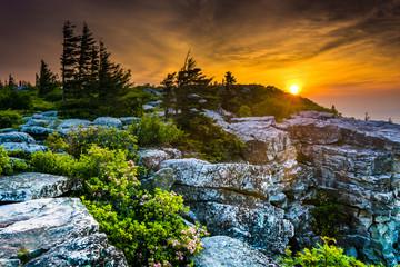 Sunrise at Bear Rocks Preserve, in Dolly  Sods Wilderness, Monon