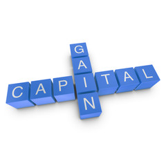 Capital Gain Crossword Concept