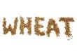 Leinwanddruck Bild - WHEAT geschrieben mit Weizenkörnern auf weißem Hintergrund