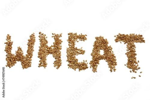 Leinwanddruck Bild WHEAT geschrieben mit Weizenkörnern auf weißem Hintergrund