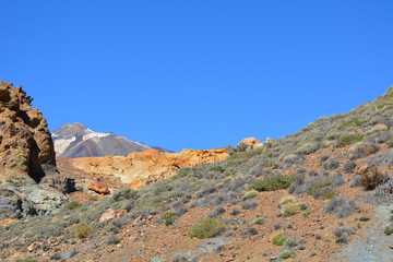 Landscape of Teide National Park. Tenerife, Canary Islands
