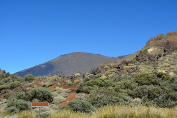 Landscape of Teide National Park. Tenerife, Canary Islands