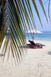 Transat et parasol sur plage de sable blanc