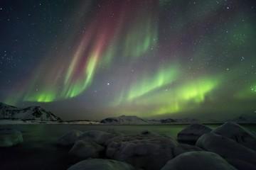 Aurora Borealis - Arctic fjord
