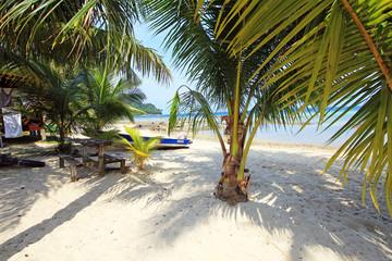 Plage sable blanc et palmier