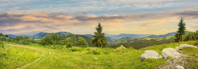boulders on hillside meadow in mountain at sunrise