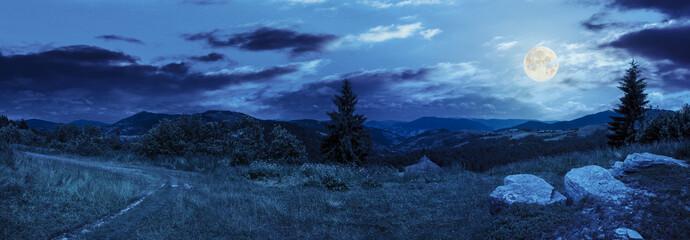 boulders on hillside meadow in mountain at night