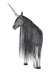 Last Unicorn