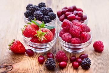 strawberries, dogwood, blackberries and raspberries in bowls