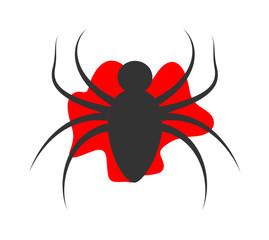 Spider Shape Design