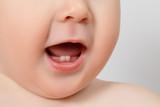 Fototapety closeup of a Baby teeth