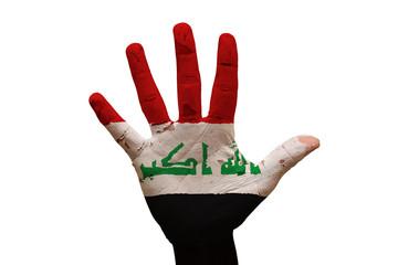 palm flag iraq