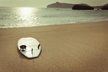 surfboard on the wild beach