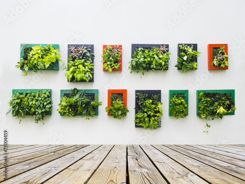 Fotobehang Planten decorated wall by vertical planting
