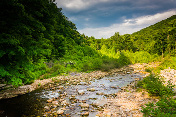 Red Creek, in the rural Potomac Highlands of West Virginia.