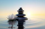 Fototapety Weiße Lotusblüte und Steine im Wasser