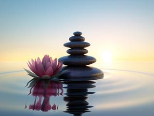Pinkfarbene Lotusblüte und Steine im Wasser