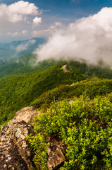 Fog and low clouds over the Blue Ridge Mountains, seen from Litt