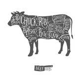 Fototapety Vintage hand drawn butcher cuts of beef scheme