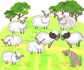 Flock of sheep and shepherd dog