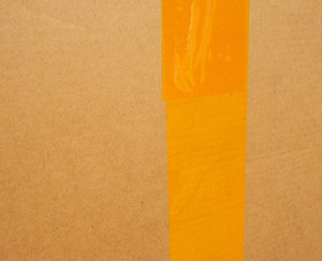 Corrugated cardboard packet
