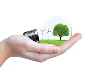 Eco bulb with wind turbines and tree in hand.