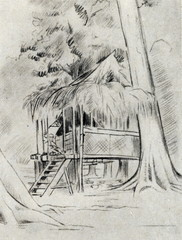 Mikluho-Maklai's hut at Garagassi Point,  New Guinea