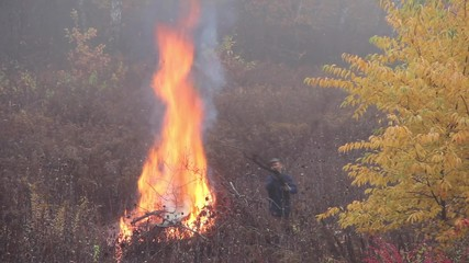 Fire. man is burning branches in a foggy autumn day