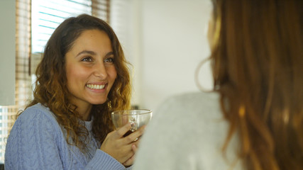 Attractive woman in kitchen talking to her friend