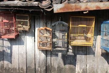 Indonésie - Marché aux oiseaux