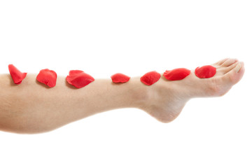 beauty female foot with scarlet rose petals