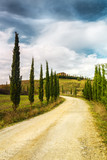 Typical landscape of Tuscany