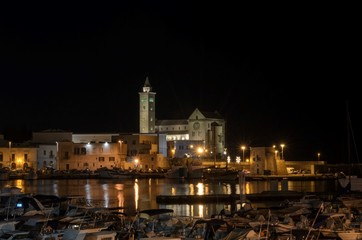 Trani cathedral in night sky from the marina