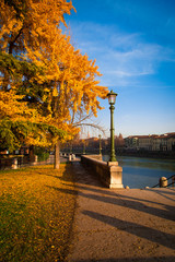 Autumn in Verona public garden