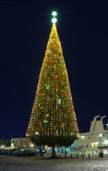.A large Christmas tree