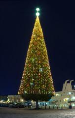 .A large Christmas tree