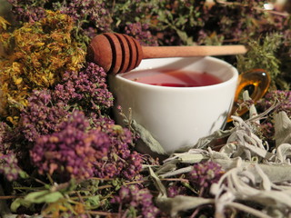 Healing herbs and healty tea