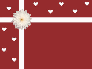 white daisy ribbon hearts valentine's day red background