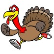 Turkey Run - 75054045