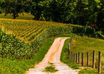 A dirt farm road in rural York County, Pennsylvania.