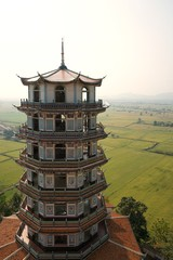 Chinese tower style with rice field