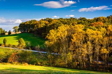 Autumn color in rural York County, Pennsylvania.